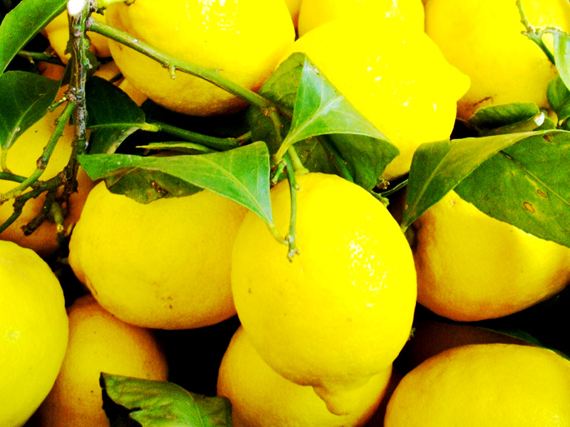 lemon-sample